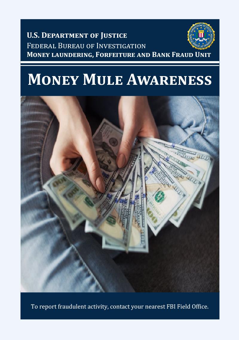 Money Mule Awareness cover